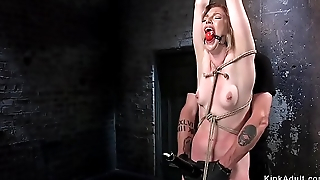 Hogtied brunette gets pussy fisted